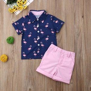 2 Piece Flamingos Set